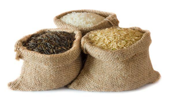 Reis und Reisersatz