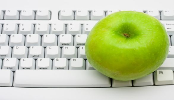 Was sind Online-Diäten?