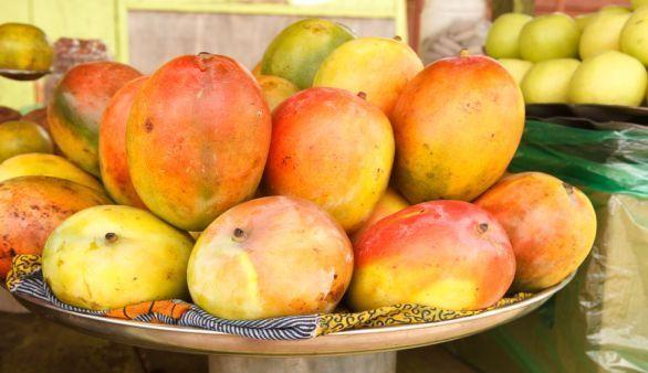 Durch afrikanische Mango abnehmen?