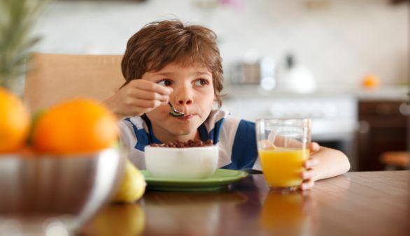 Wie ernähre ich mein Kind richtig?