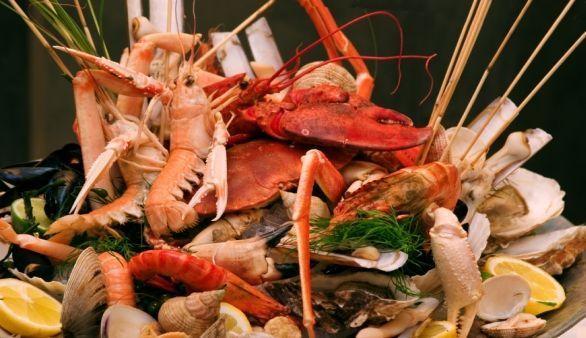 Muskelaufbau mit Fisch und Meerestieren