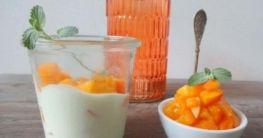 Frozen Joghurt Kokos-Aprikose